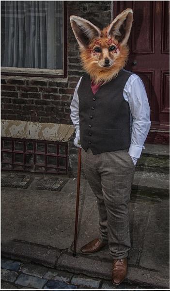 Mr Fox by stevenb