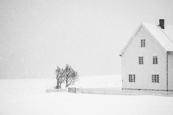 Winter.... by trusth