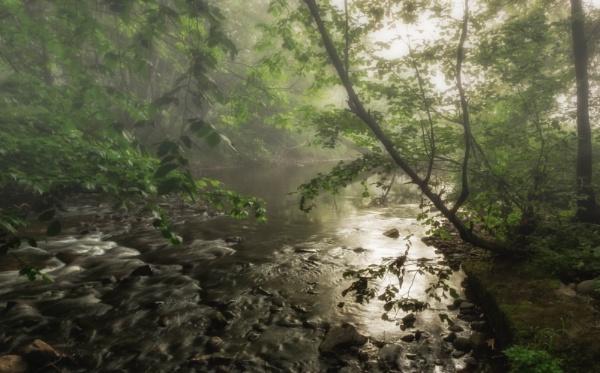 Life is like a mist by BillRookery