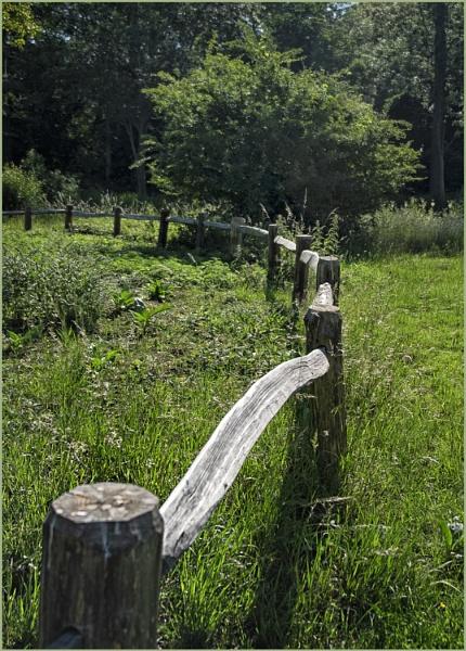 Fence 3 by AlfieK