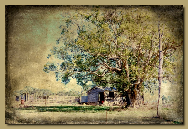 Old Farm Shed by Peco