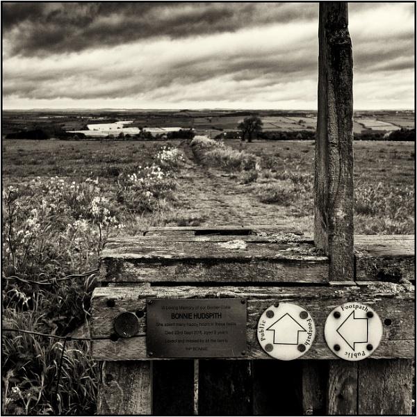 Taken in Isolation 46 by woolybill1