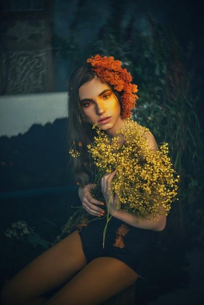 A Midsummer Night\'s Dream by cristinavenedict