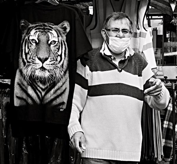 TIGER! TIGER! by hobbo