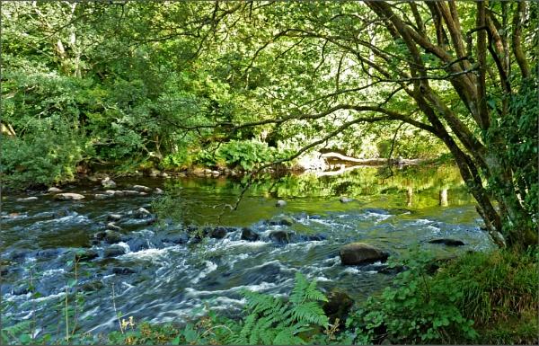 Dartmoor .... by JuBarney