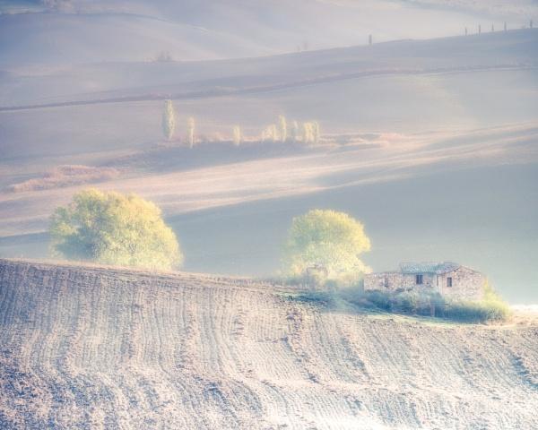 Tuscan Dawn by bravo charlie