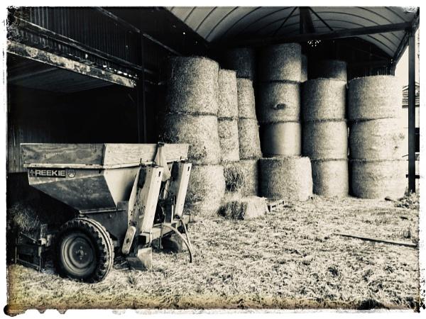 Farm shoppin by dukes_jewel