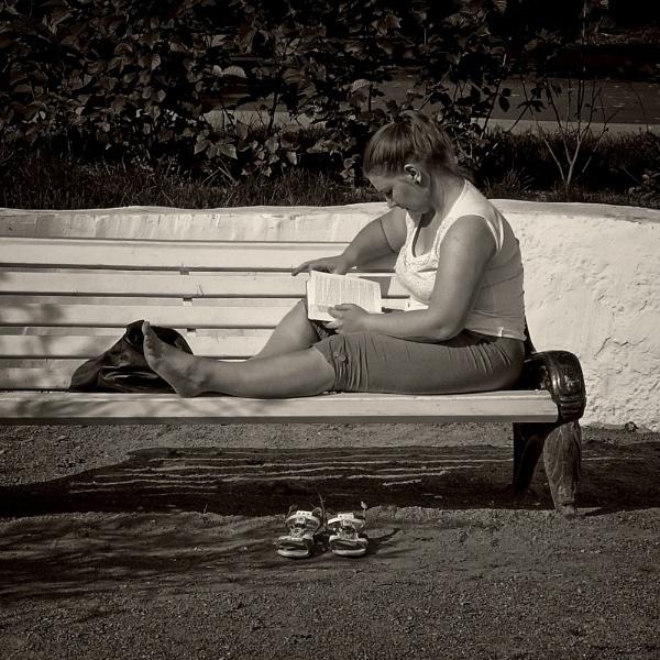 midsummer reader by leo_nid