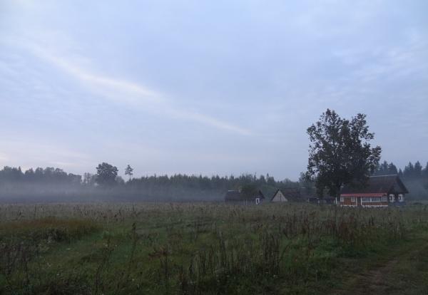 Morning in the farm by SauliusR