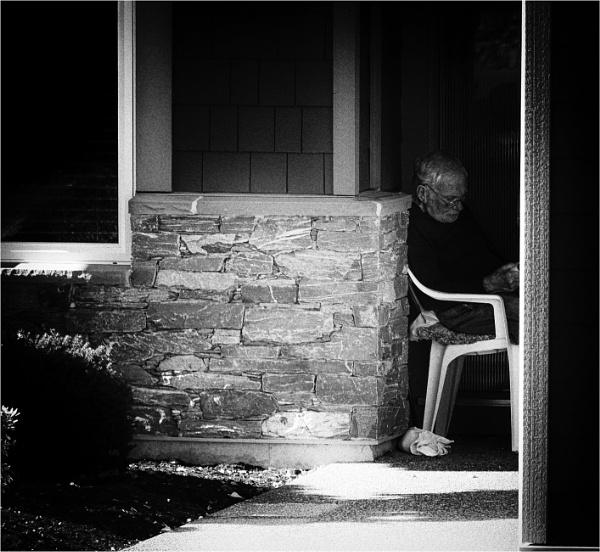 A Sheltered Corner by Daisymaye