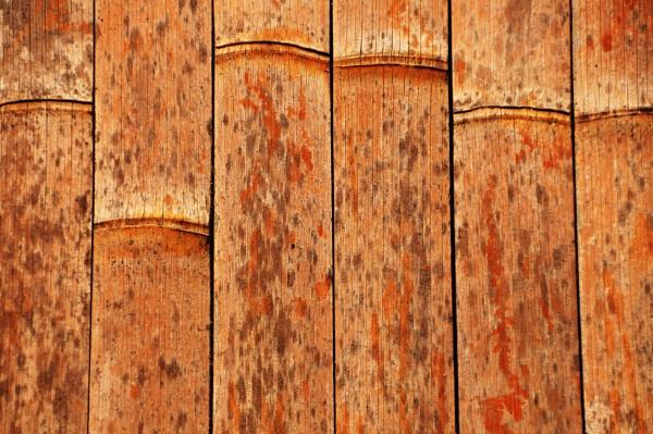 Bamboo and wood !! by Chinga