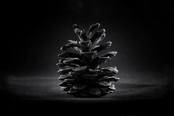 Cone by mdc0ffey
