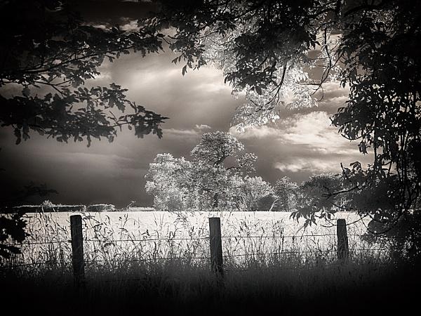 Field of dreams by milepost46