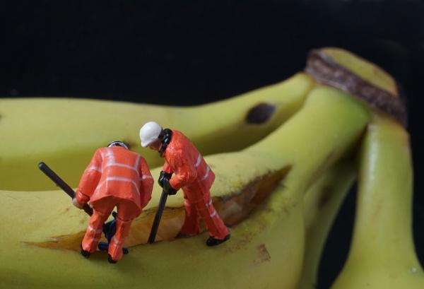 Bananas by altitude50