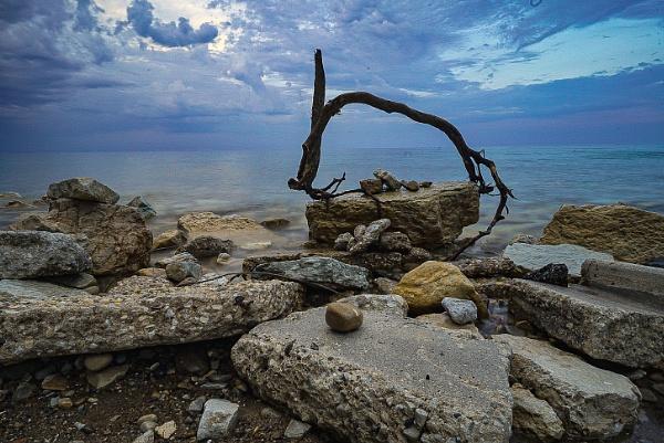 Driftwood at dusk by Fbenjamin