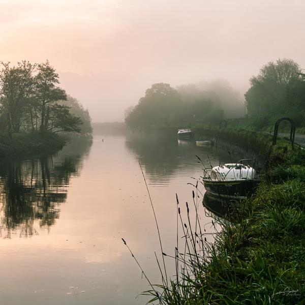 Misty Morning by LLCJ