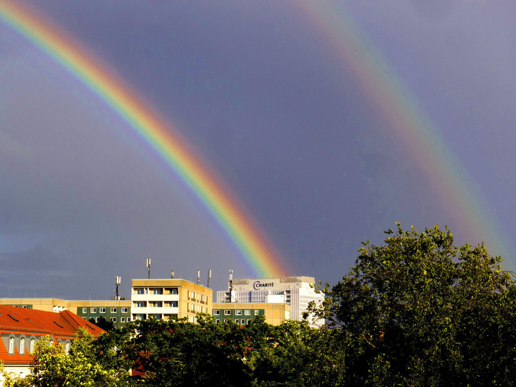 Charité Rainbow