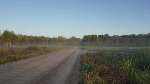 Morning fog by SauliusR
