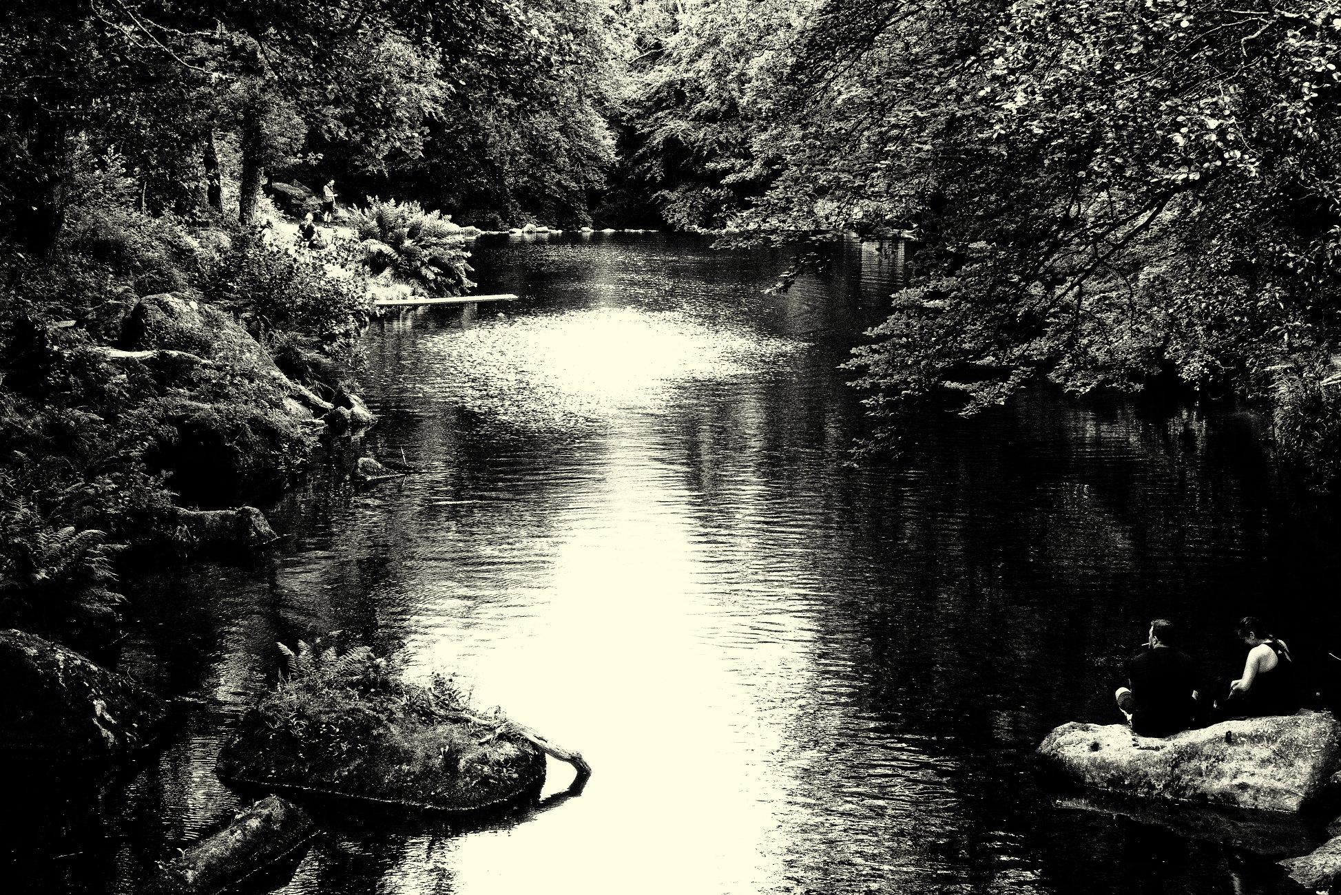 Scene Near Fingle Bridge, Devon