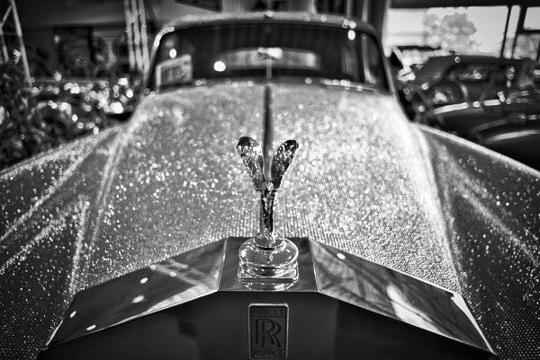 Emily and the Swarowski Rolls Royce by icipix