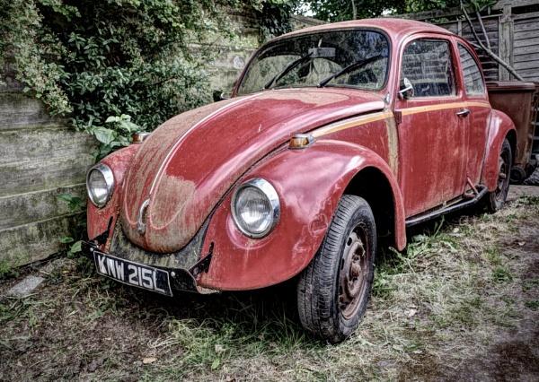 Beetle by nclark
