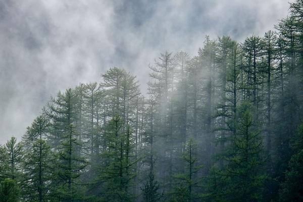 haze in mountain by jeakmalt