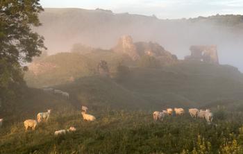 Dryslwyn Castle ruins in Morning Mist