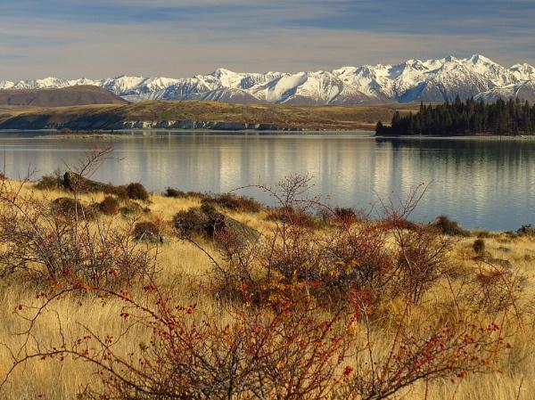 Lake Tekapo 61 by DevilsAdvocate