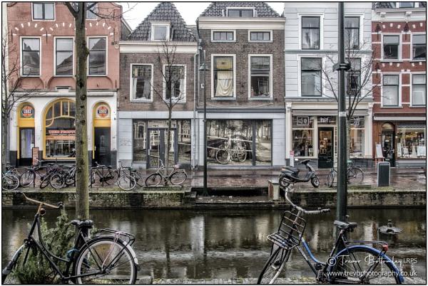 Binnenwatersloot, Delft by TrevBatWCC