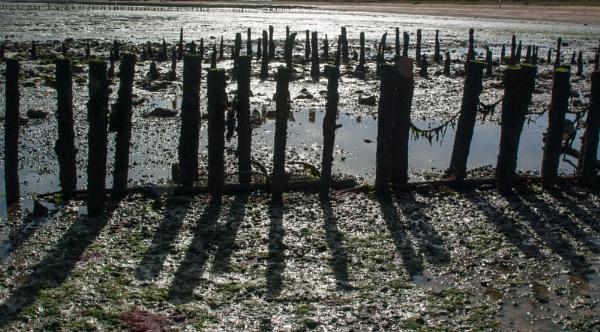 Broken Breakwaters by nclark