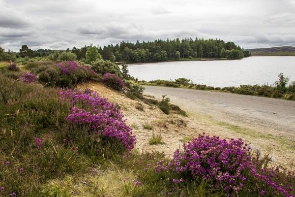 Lochindorb by Irishkate