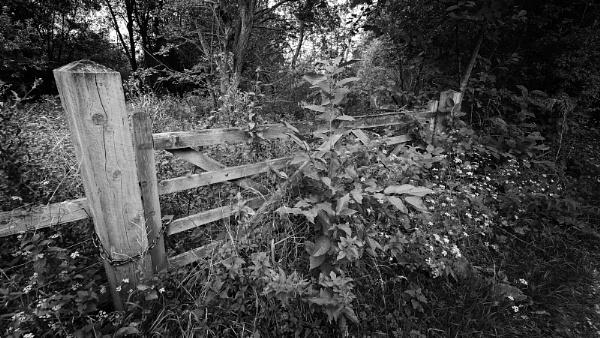 Un-used Gateway by pauljt