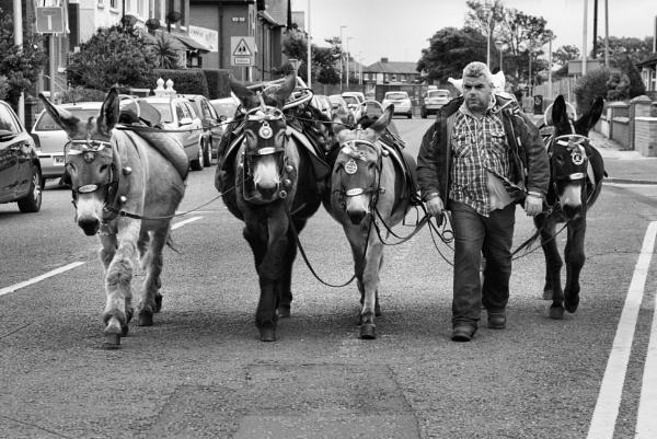 Donkey Man by Steveo28