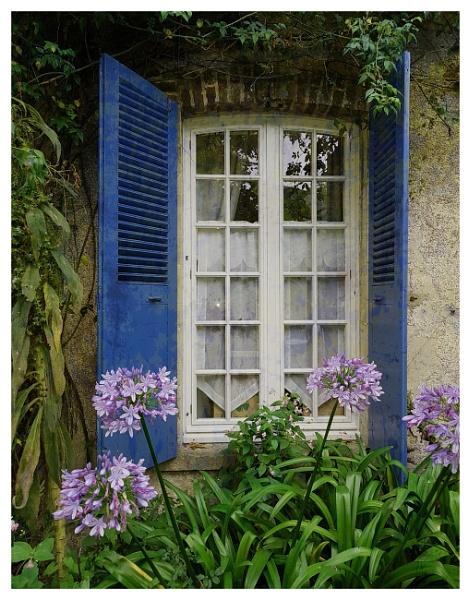 The quaint little window by suemart