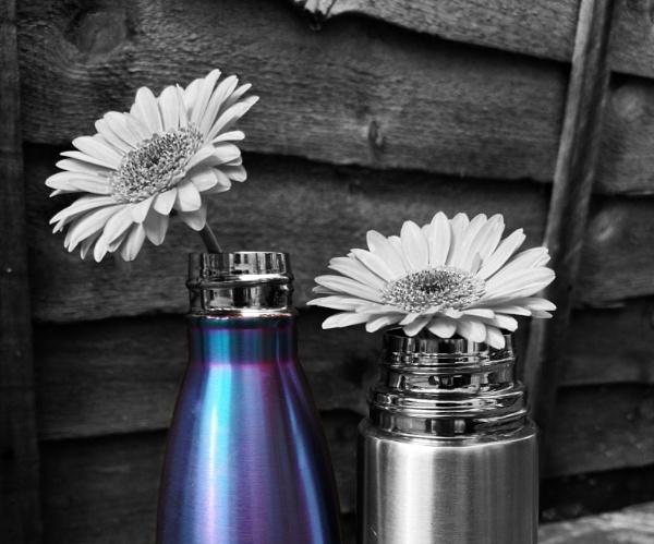 Shiny flasks. by ReynoldsPhotography