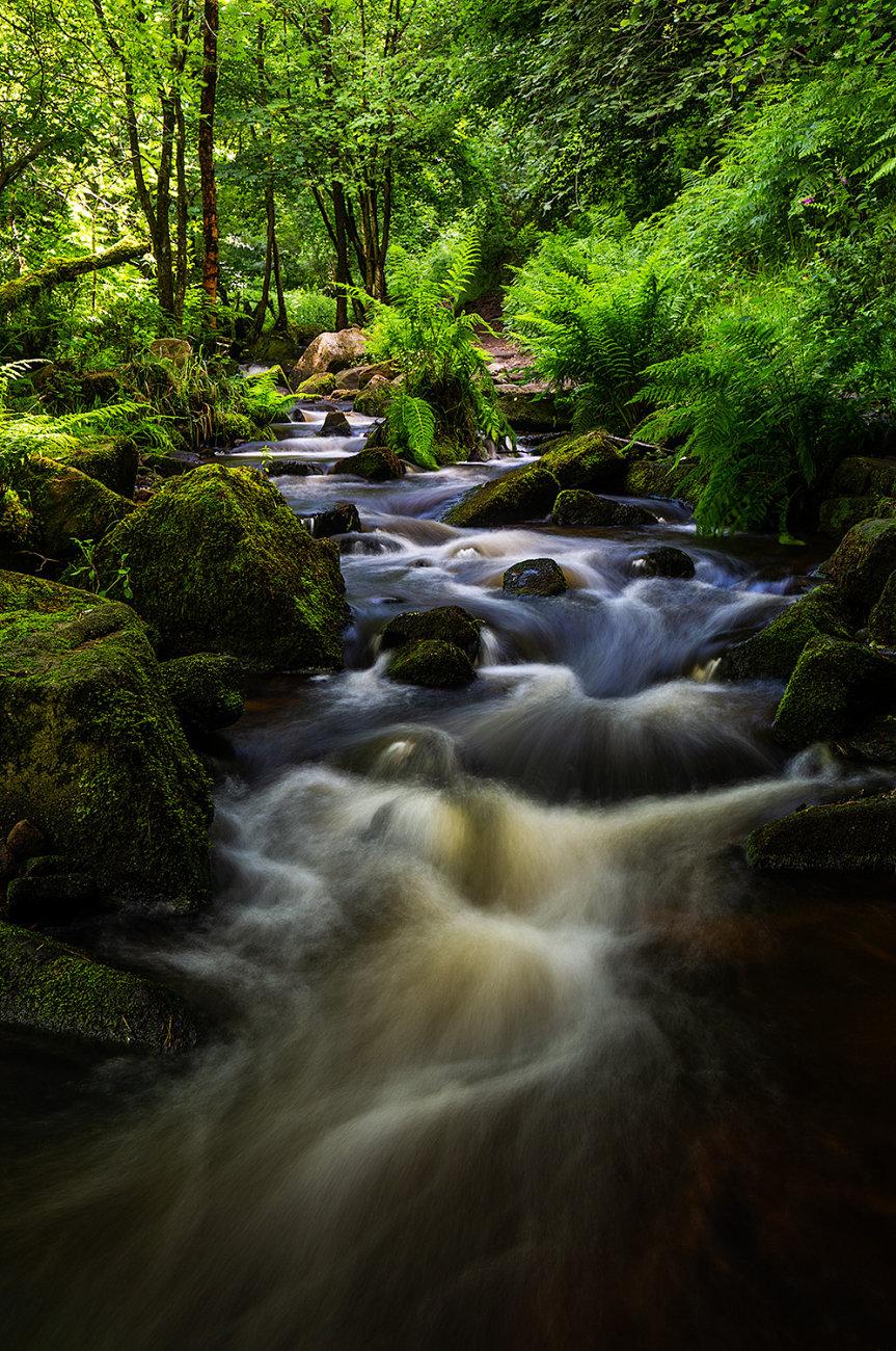 Flowing through Greenery