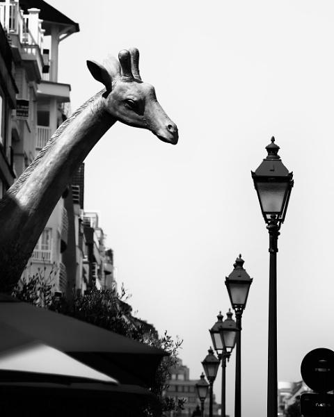 \'They\'re Having a Giraffe \' Cockney rhyming slang (Part 1) by Alfie_P