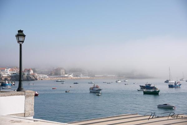 Misty morning. by HarrietH