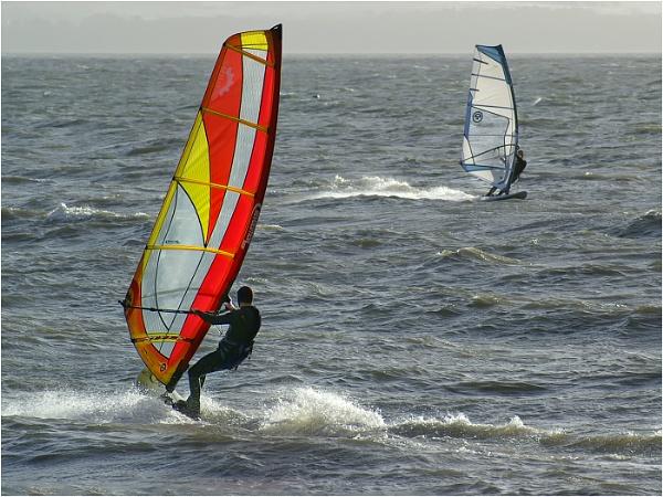 Sail Bording by Tobytoes