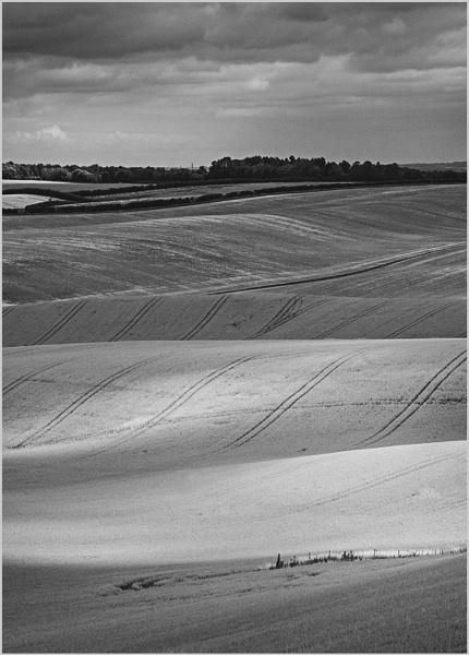 Therfield Hills by AlfieK
