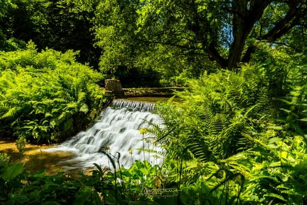 Mottisfont Abbey Gardens waterfall by IainHamer