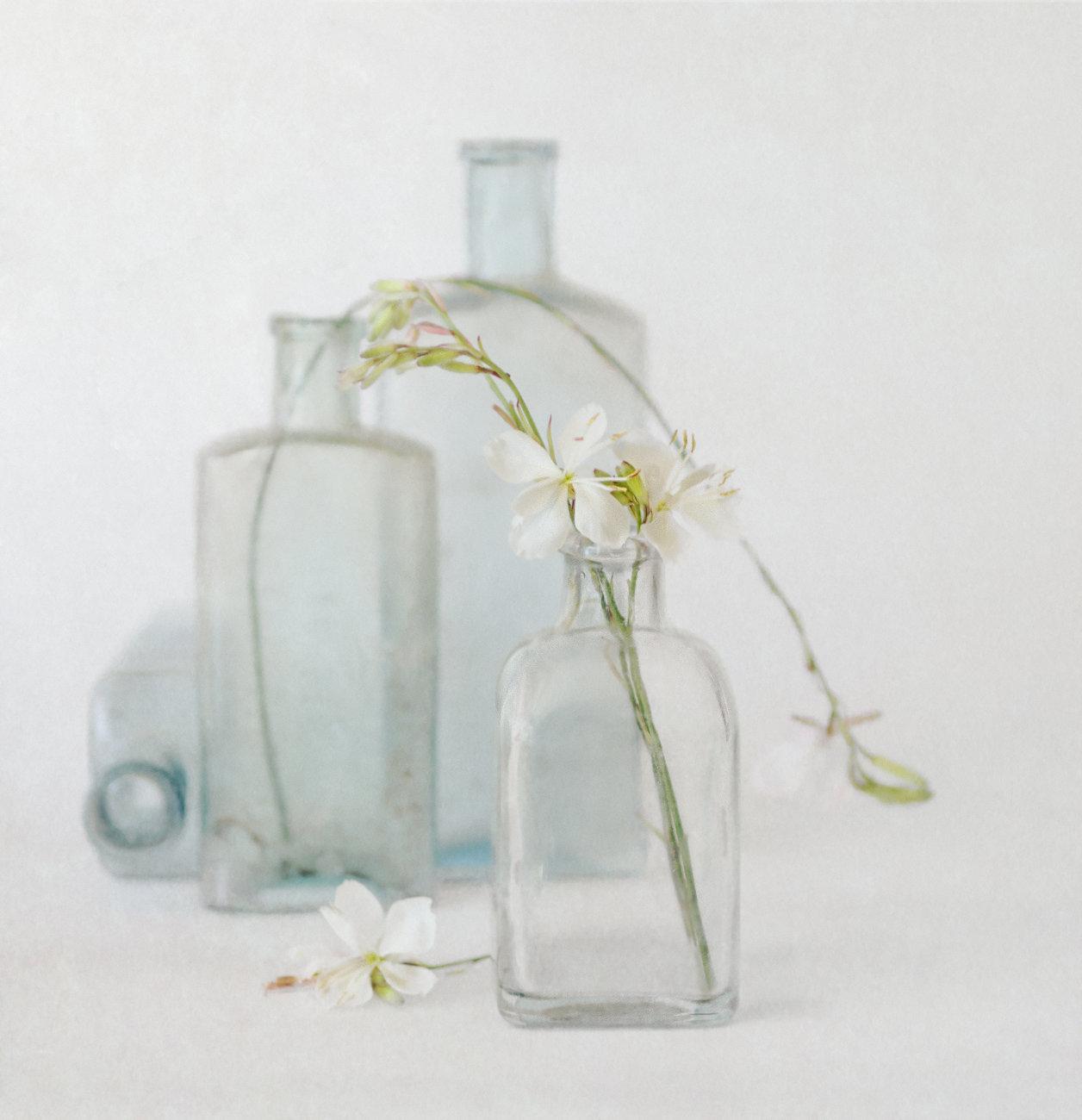Bee Beautiful Transparent Glass Liquid