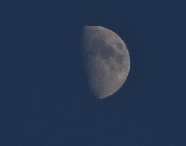 lunar in shadow by sparrowhawk