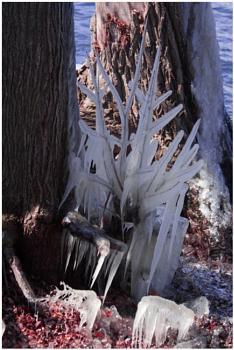 Ice Art (best viewed large)