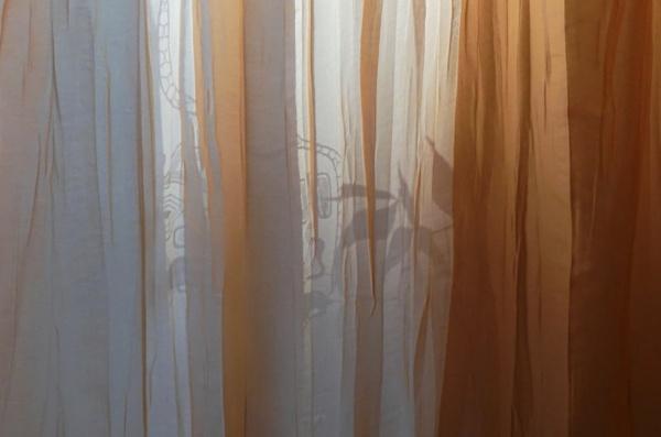 Delicate shadow by SauliusR