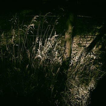 Simply Shadows-1