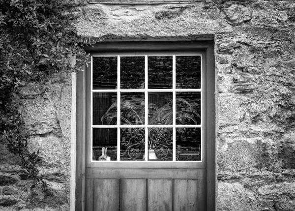 Window by Daffy1