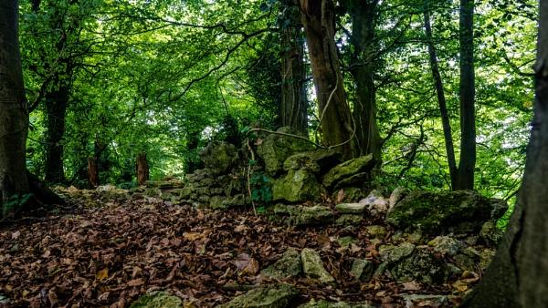 Crumbling Wall by woodini254