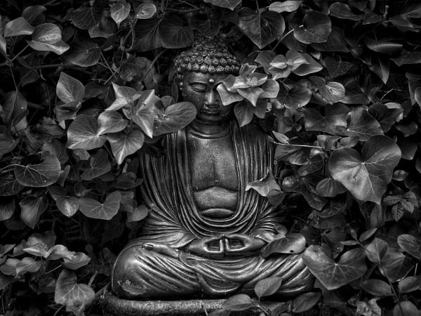 Garden Buddha. by victorburnside