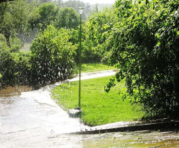 Rain by Kabrielle
